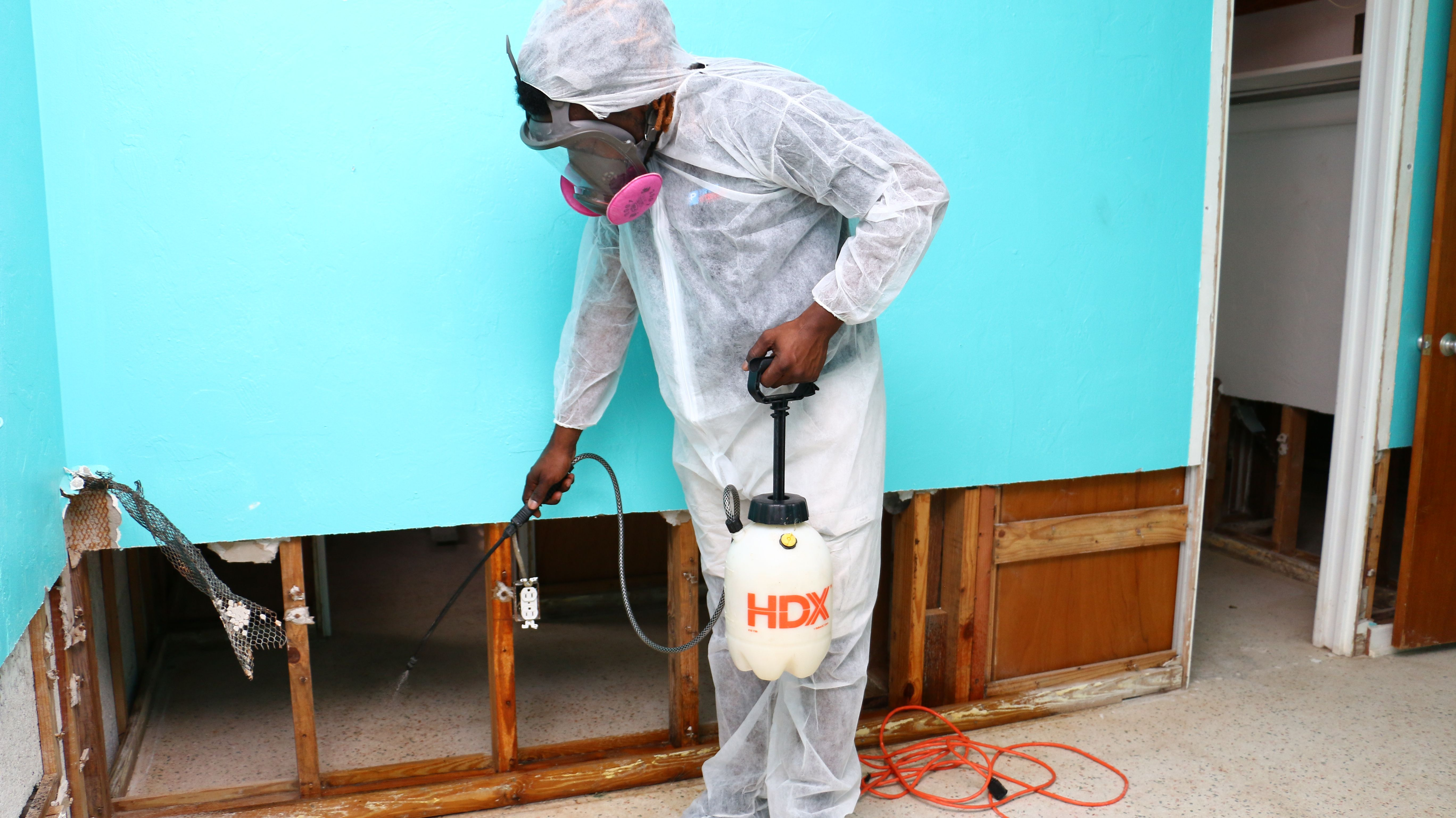 Licensed Mold Technician Spraying
