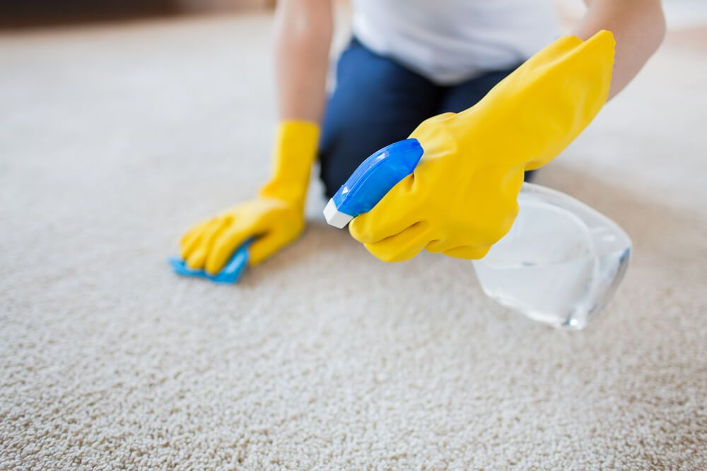 Cleaning carpet with household products